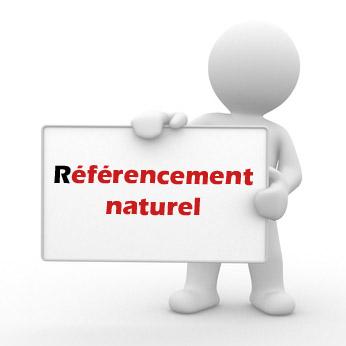 référencement de site web