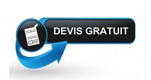 devis formation wordpress paris